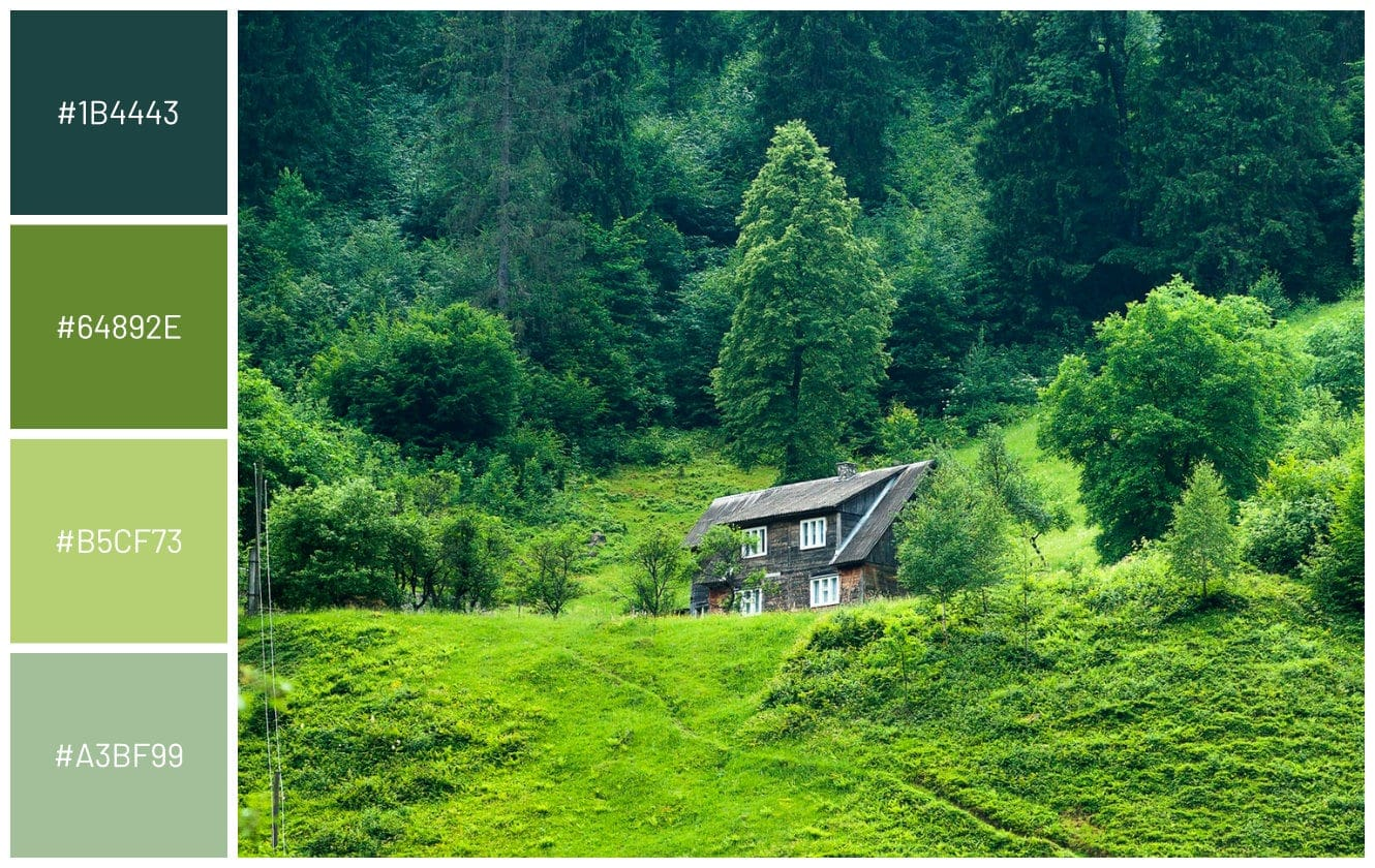 mountain log wood cabin surrounded by ever green trees